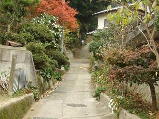 坂町・頭部(ずぶう)みはらし公園へ登ってみよう!①_b0095061_82426.jpg
