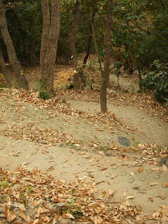 坂町・頭部(ずぶう)みはらし公園へ登ってみよう!①_b0095061_865684.jpg
