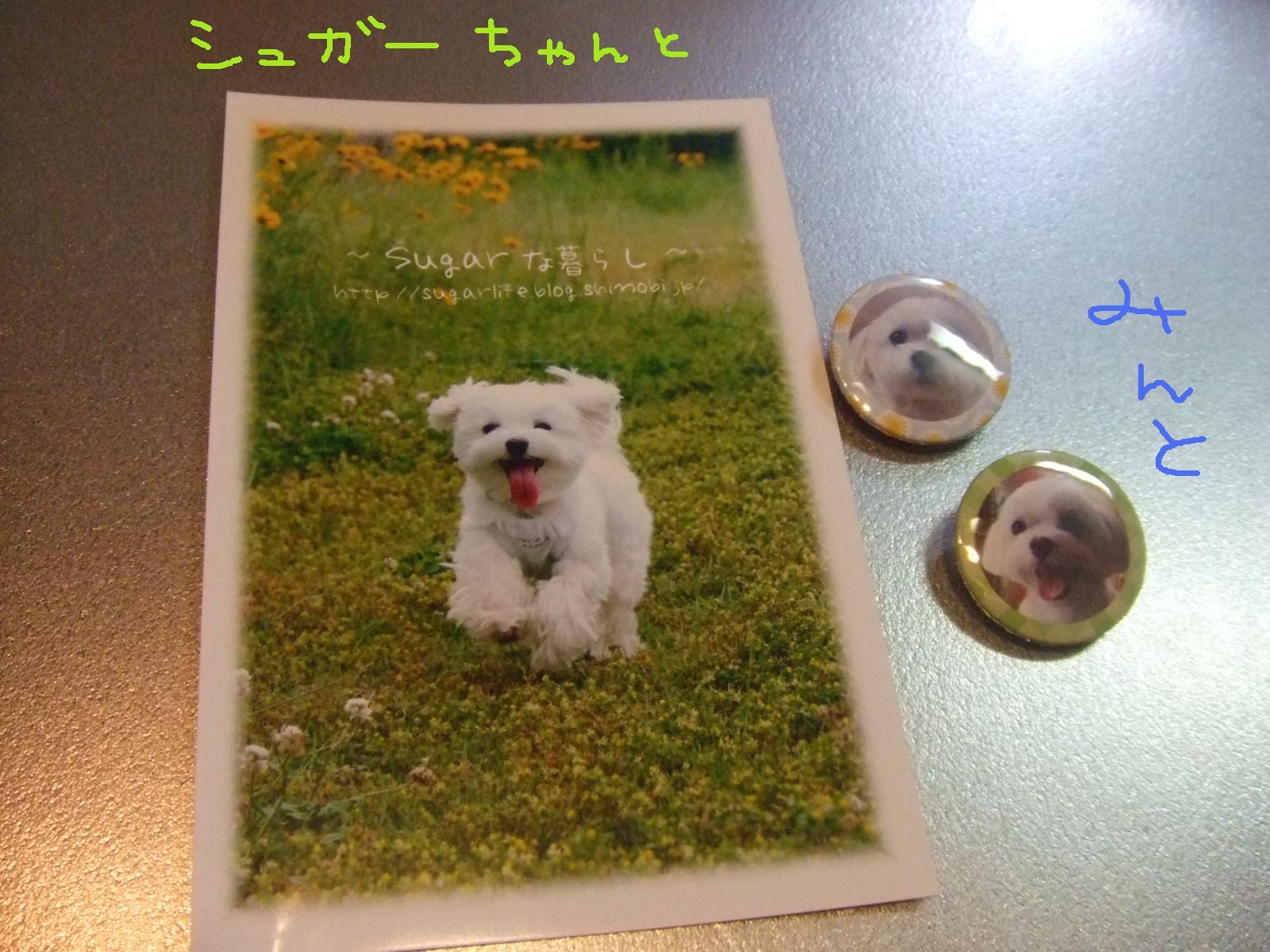 f0148595_137926.jpg