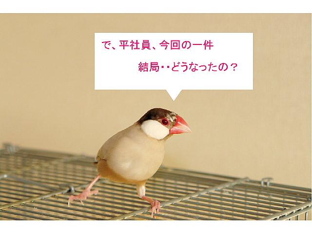 a0019545_2093261.jpg