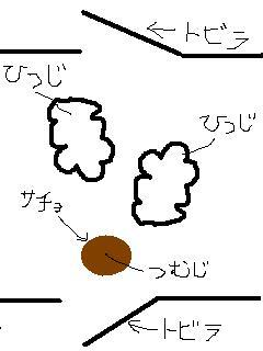 b0021747_22435438.jpg