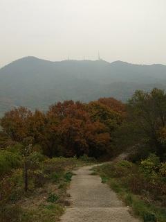 坂町・頭部(ずぶう)みはらし公園へ登ってみよう!③_b0095061_82702.jpg