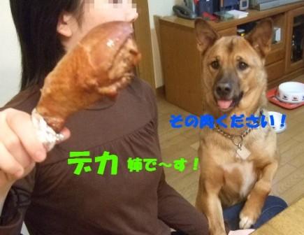 b0087400_131852.jpg