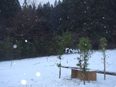 吹雪の地鎮祭_c0111229_1783322.jpg