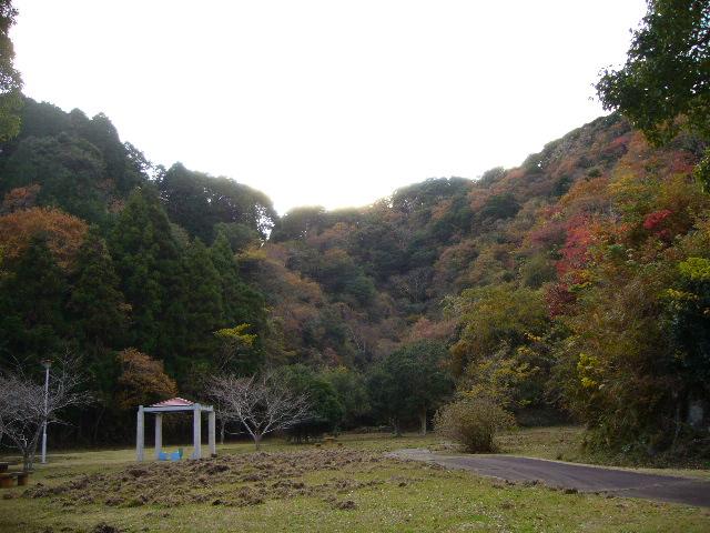 2007年12月5日(水)シロン振り、シロ君!_f0060461_1919234.jpg