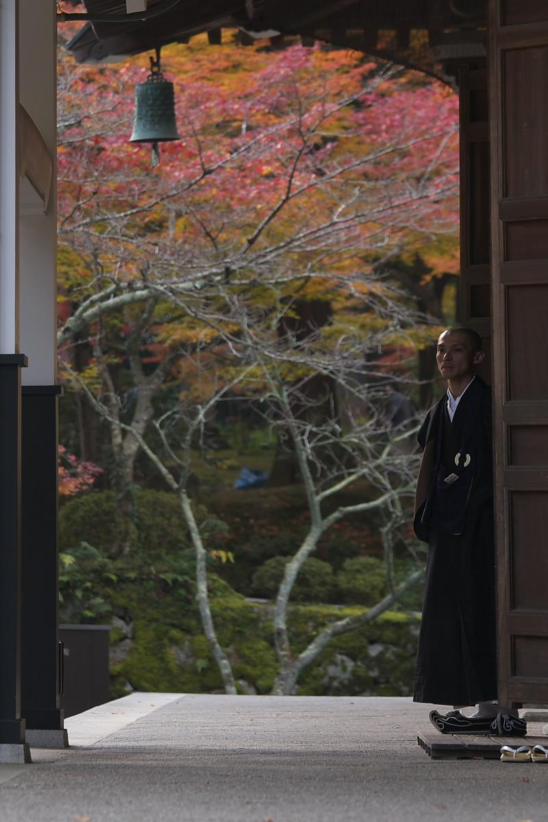 紅葉 2007 <南禅寺> 3_f0021869_22115138.jpg