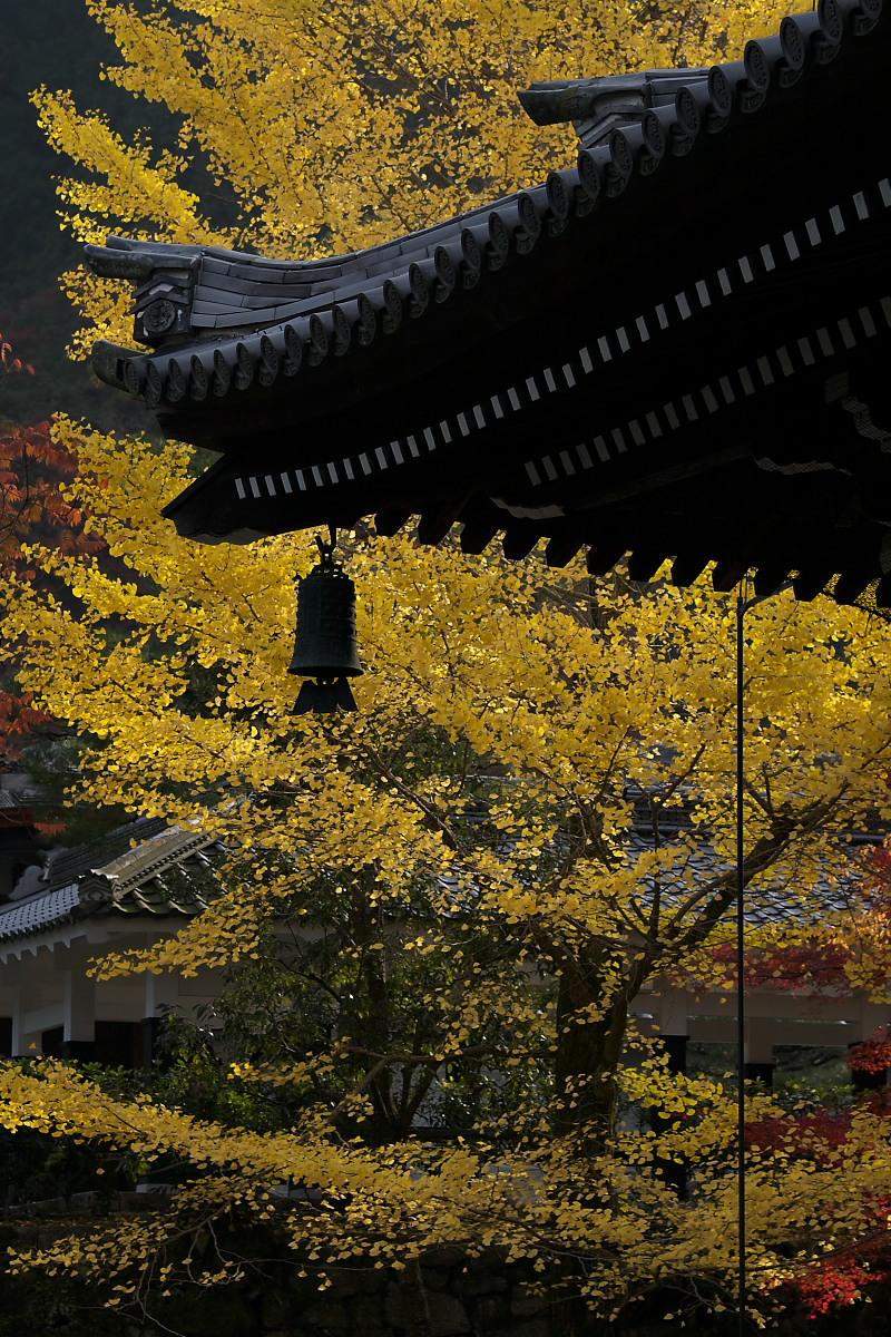 紅葉 2007 <南禅寺> 3_f0021869_2212272.jpg