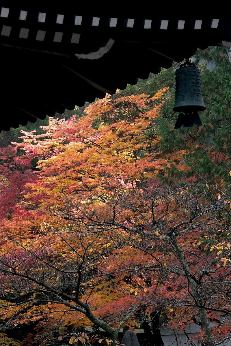 紅葉 2007 <南禅寺> 3_f0021869_2214182.jpg