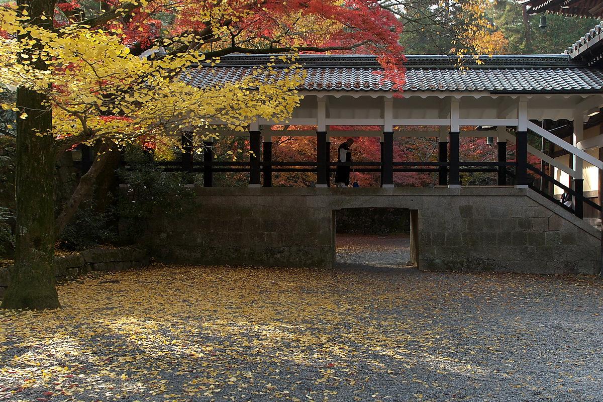 紅葉 2007 <南禅寺> 3_f0021869_2293996.jpg