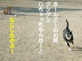 b0057675_9552543.jpg