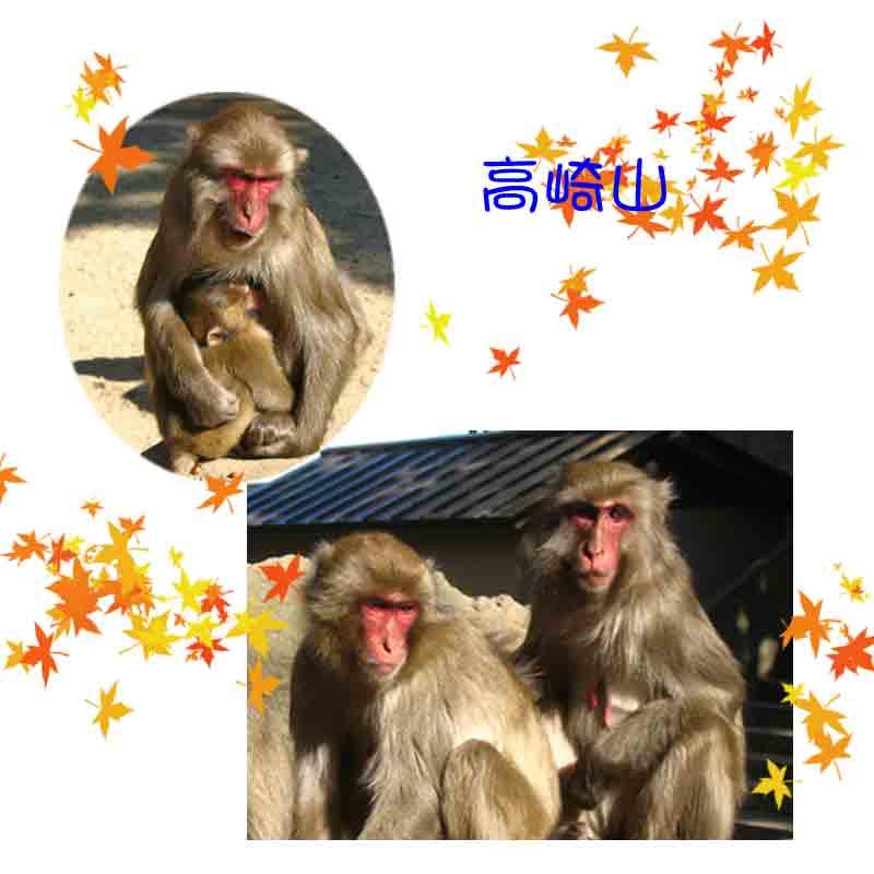 b0014607_21102443.jpg