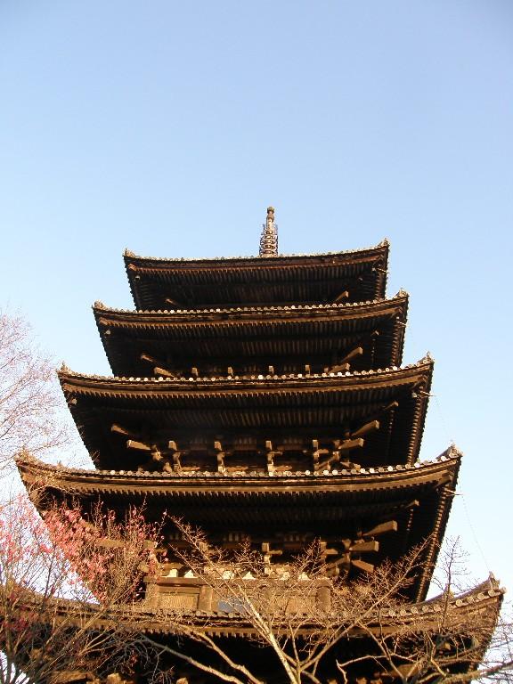 京都のもみじ_f0128542_2332069.jpg