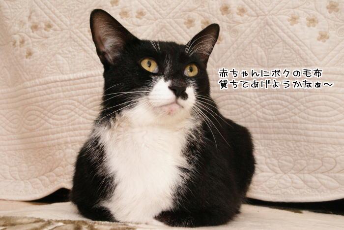 f0142061_051221.jpg