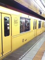 Yellow!_e0045977_14543342.jpg