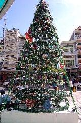 クリスマスを前に_d0113490_1593749.jpg