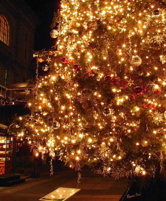ブライアント・パークのクリスマスツリー 2007_b0007805_1526248.jpg
