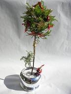 クリスマス・お正月の贈り物_a0077025_1502461.jpg