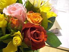 ∵ *池に恋して〜rose〜*_d0040733_23474590.jpg