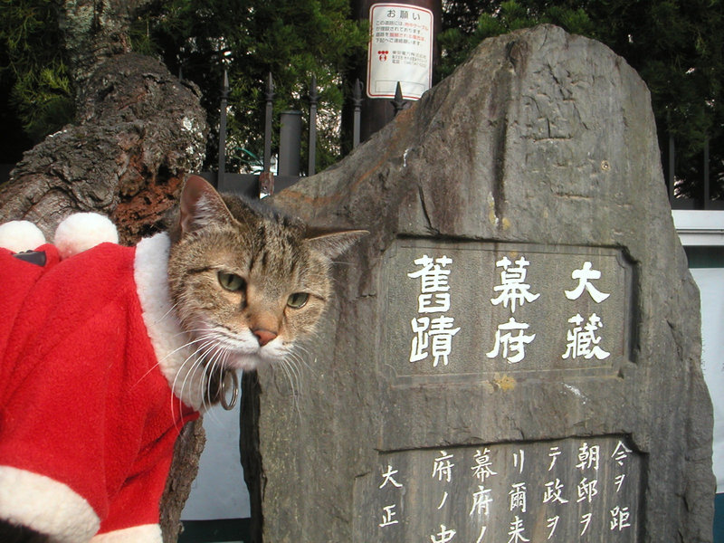 いい国つくろう鎌倉幕府
