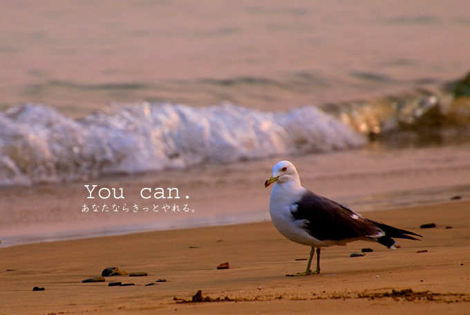 You can._c0141020_22535893.jpg