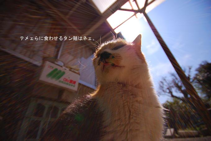 タン麺・・・_c0141020_2253643.jpg