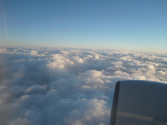 今日も飛んで、、、、、、_c0126359_745334.jpg