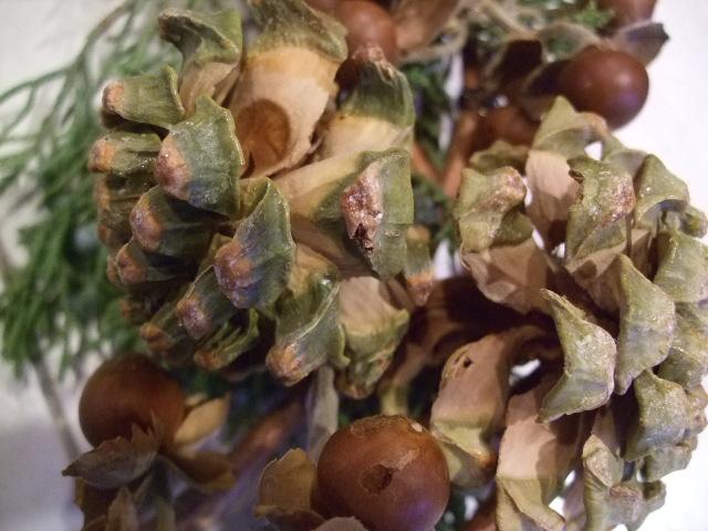 オークリーフ花の教室(リースのお教室)_f0049672_17251030.jpg