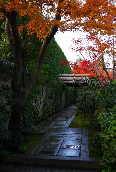 黄梅院(大徳寺塔頭)_e0051888_1752912.jpg