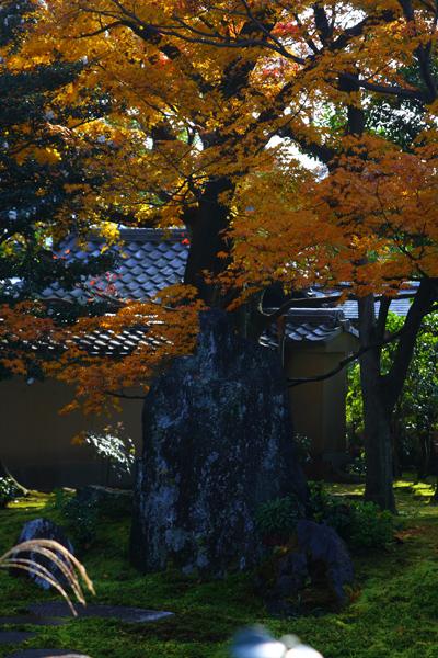 黄梅院(大徳寺塔頭)_e0051888_17585275.jpg