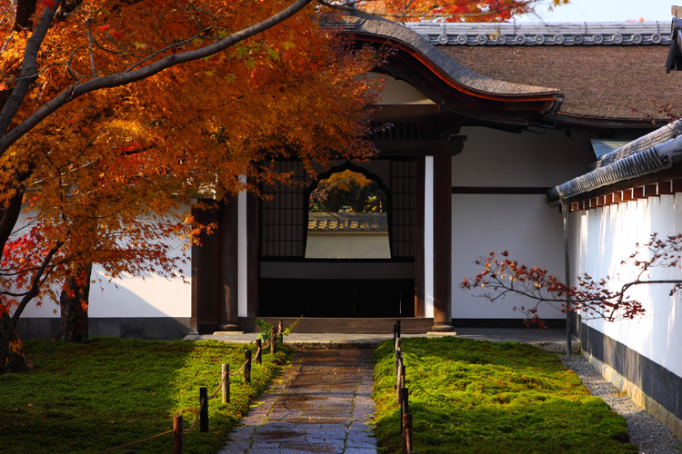 黄梅院(大徳寺塔頭)_e0051888_1817435.jpg