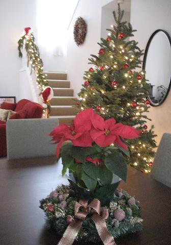 クリスマスの準備が出来たよーー!_c0119197_10102028.jpg