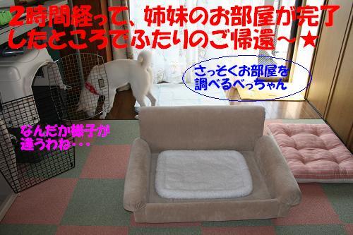 f0121712_13173941.jpg