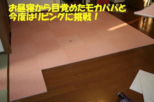 f0121712_1318692.jpg