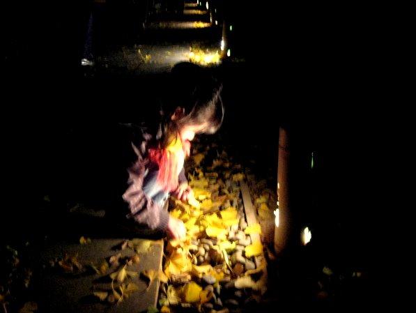 ライトアップさらた大田黒公園を歩いたよ_c0150923_19234395.jpg
