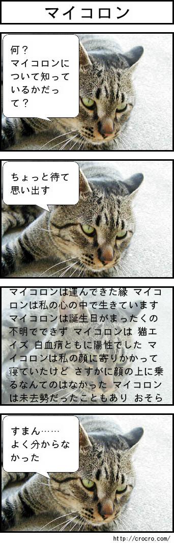 f0135859_1575931.jpg
