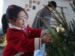 それでも、結局クリスマスツリー(笑)_f0106597_3361186.jpg
