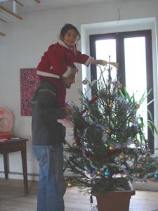 それでも、結局クリスマスツリー(笑)_f0106597_3383562.jpg