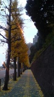 東京クリスマス☆★_f0128409_22982.jpg