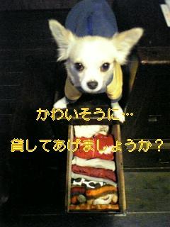 こんなに!!_f0148927_19123997.jpg