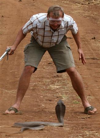 ★ケニアで2.7mの新種の「ドクハキコブラ」が発見される!!_a0028694_21282774.jpg