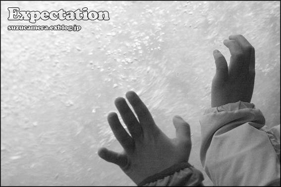 手は口ほどにものをいう_f0100215_23594554.jpg