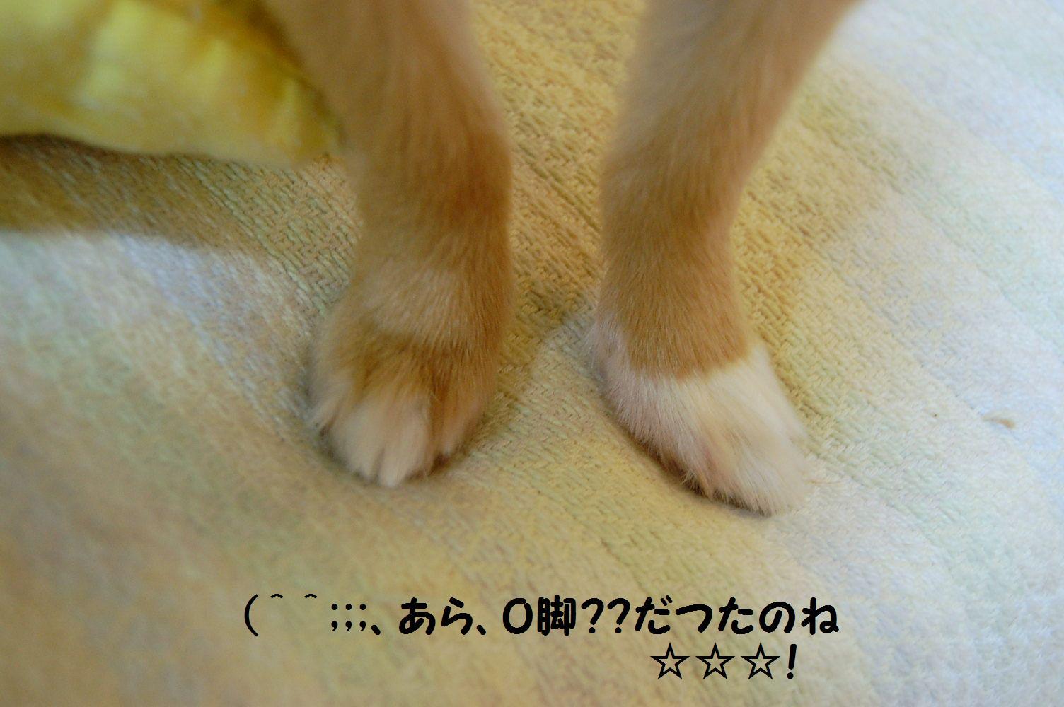 b0112758_2061946.jpg