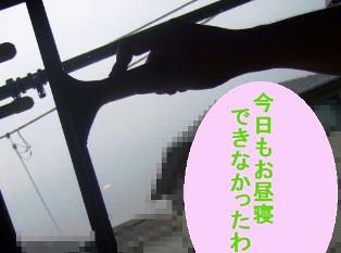 b0087400_0162119.jpg