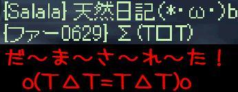 f0072010_21381247.jpg