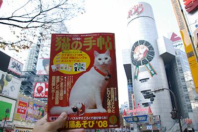 猫の手帖1月号_a0028451_1224471.jpg