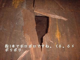 f0031037_19553282.jpg