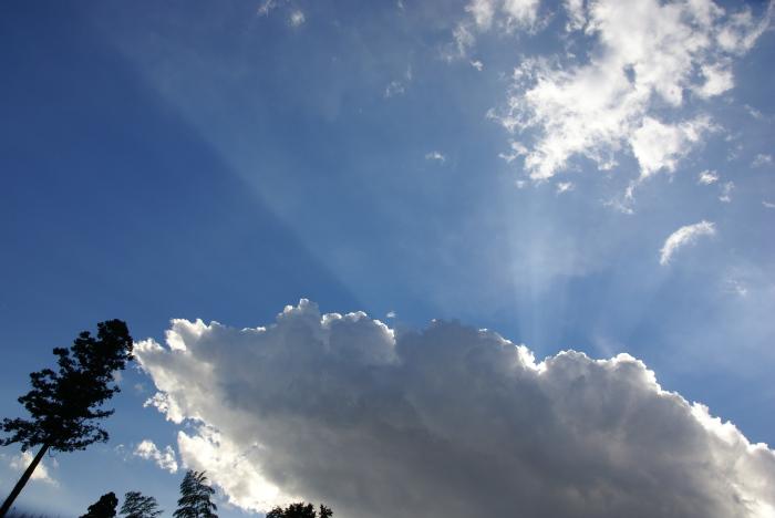 光の昼雲_e0077521_21361781.jpg