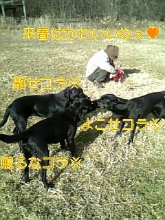f0148927_16541939.jpg