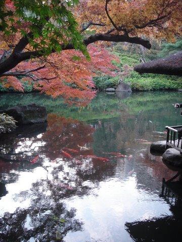 白金で四季の色を -八芳園-_c0138928_329191.jpg