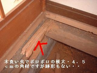 リフォーム10日目_f0031037_1716486.jpg